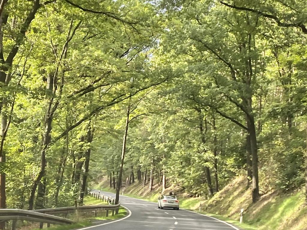 Elektrisch durch die Laubwälder
