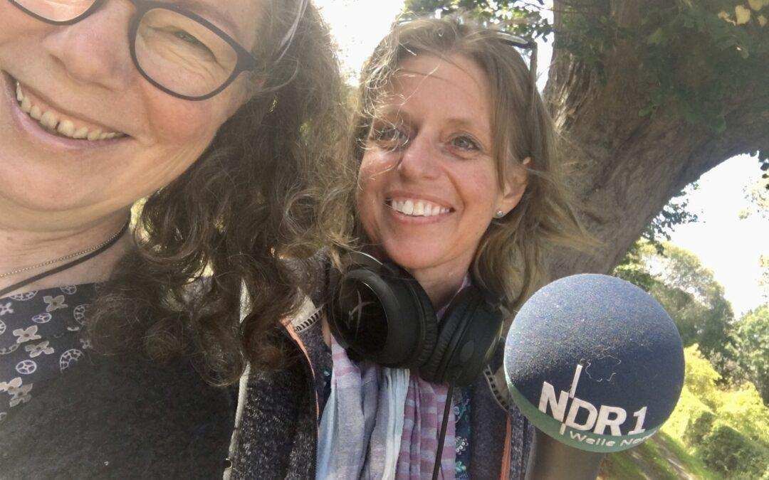 Nachhaltigkeit in der NDR Radiokirche